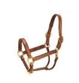 "Tory Leather 1"" Halter"