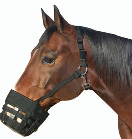 Best Friend  Deluxe Model (breakaway halter)