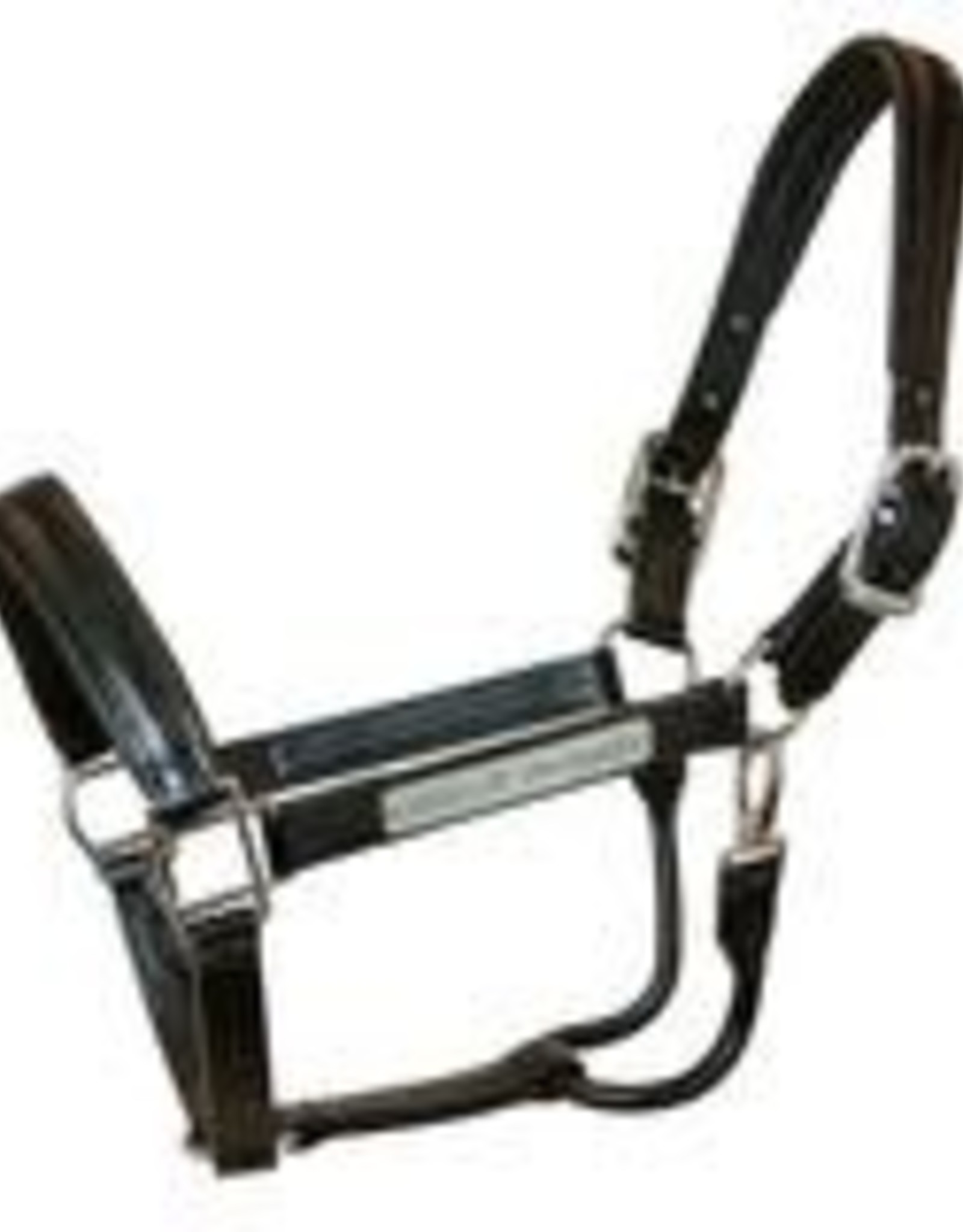 Walsh Leather Dressage Halter