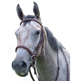 Pro-trainer Proam Fancy Raised Padded Bridle