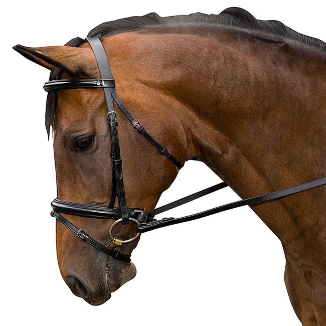 Flex Rider Plain Raised Dressage Bridle