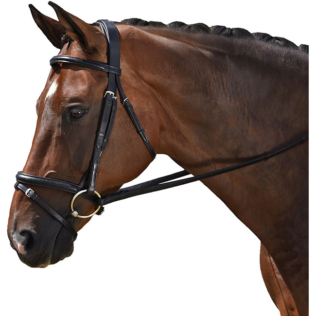 M. Toulouse MTL Classic Dressage bridle, Full