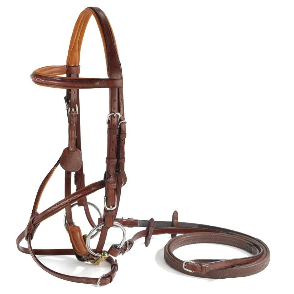 Vespucci Fancy Raised Figure-8 Bridle