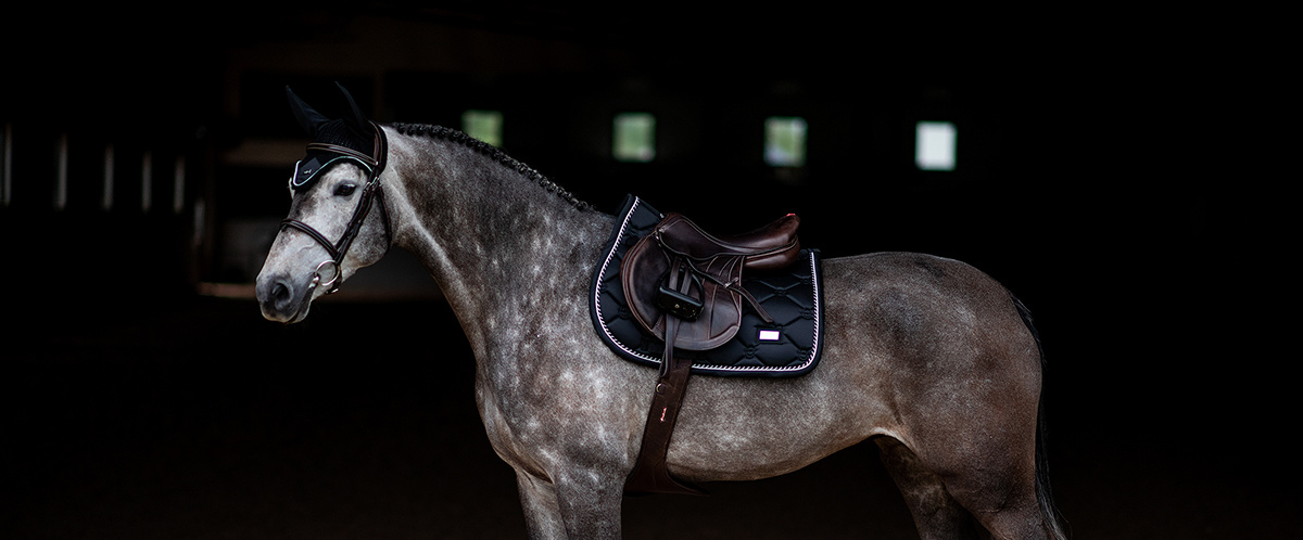 Stockholm Equestrian Black Edition