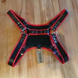 Ryder Gear Ryder Pup Club Harness Red OS