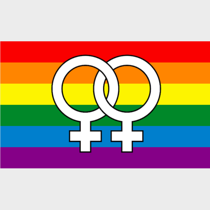 Double Venus Pride Flag (3' x 5' Polyester)