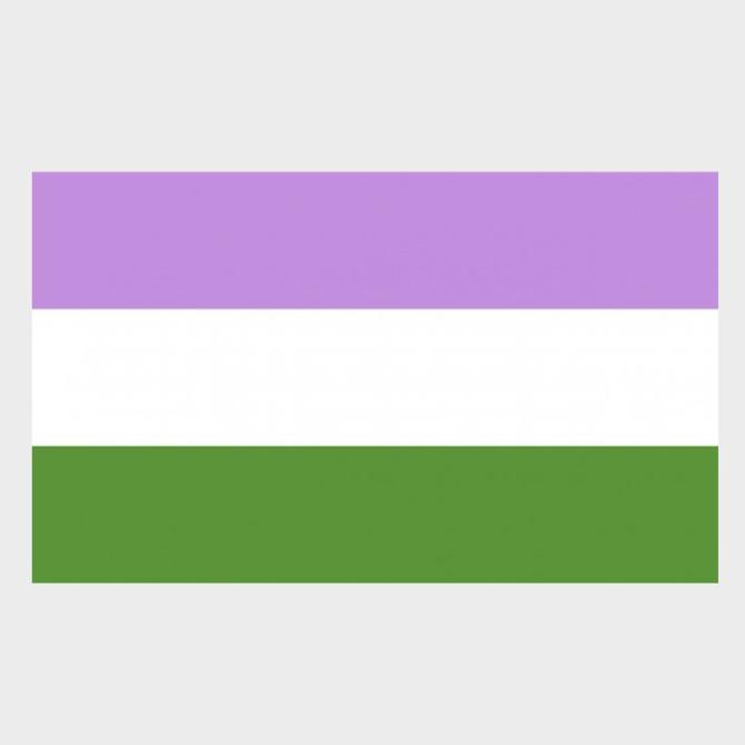 Genderqueer Pride Flag (3' x 5' Polyester)