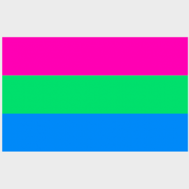 Polysexual Pride Flag (3' x 5' Polyester)