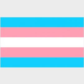 """Transgender Pride Sticker (3"""" x 2"""")"""