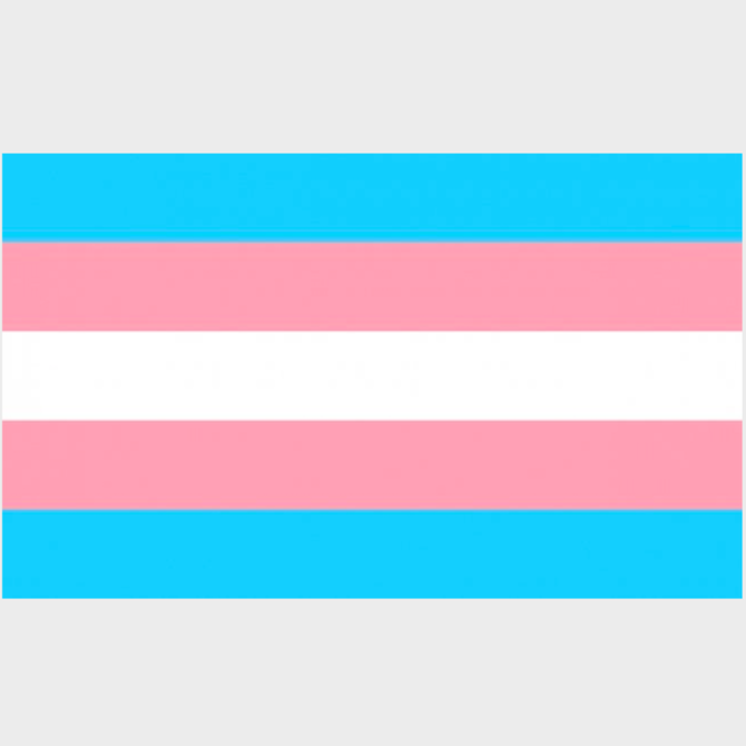 "Transgender Pride Sticker (3"" x 2"")"