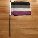 Small Asexual Pride Flag on a Stick