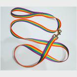 Large Rainbow Pet Leash