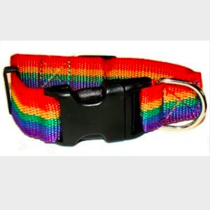 Small Breakaway Rainbow Pet Collar