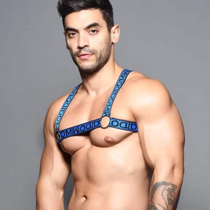 Andrew Christian Dom Ring Harness