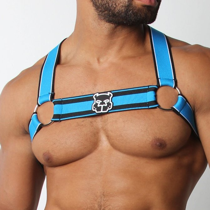 Cellblock 13 Kennel Club Scout Harness - Turquoise