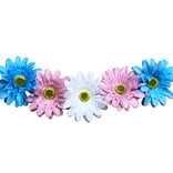 Trans Floral Headband