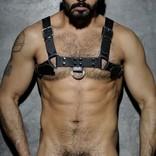 Addicted/ES AD Leather Harness - Black