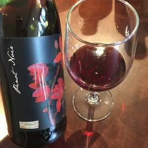 Mary Delany Botanica Pinot Noir