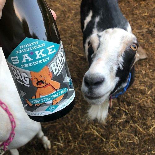North American Sake Brewery Big Baby Sake 375ml