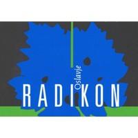 Radikon Oslavje 2014 500ml
