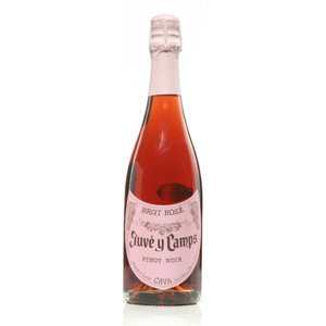 Juve y Camps Rose Brut