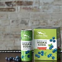 DFH Blueberry Shrub Vodka Soda 4/355