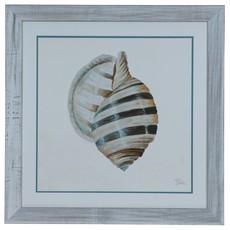 Modern Shell 1 Print