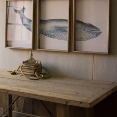 Triptych Framed Whale Print