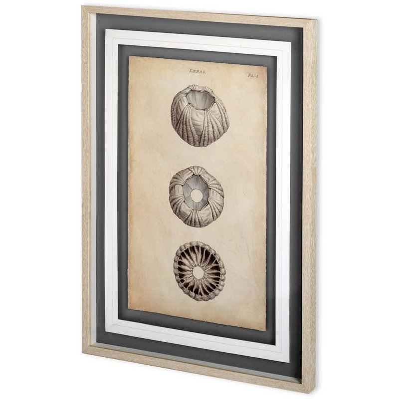 Cylindrical Shells I Print