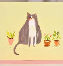 Plants & Cat
