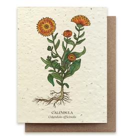 Bower Studio Calendula Plantable