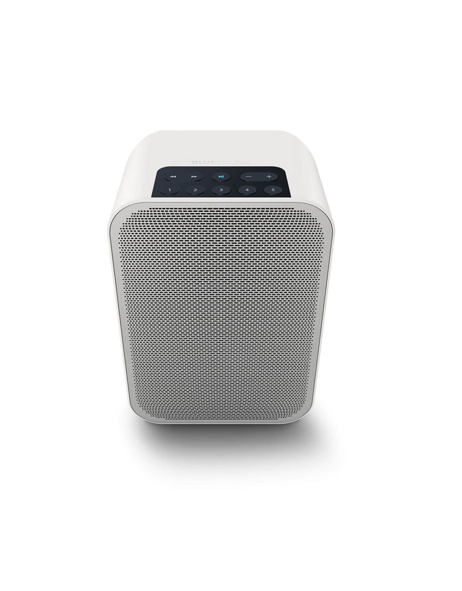 Bluesound Bluesound Pulse Flex 2i Wireless Speaker