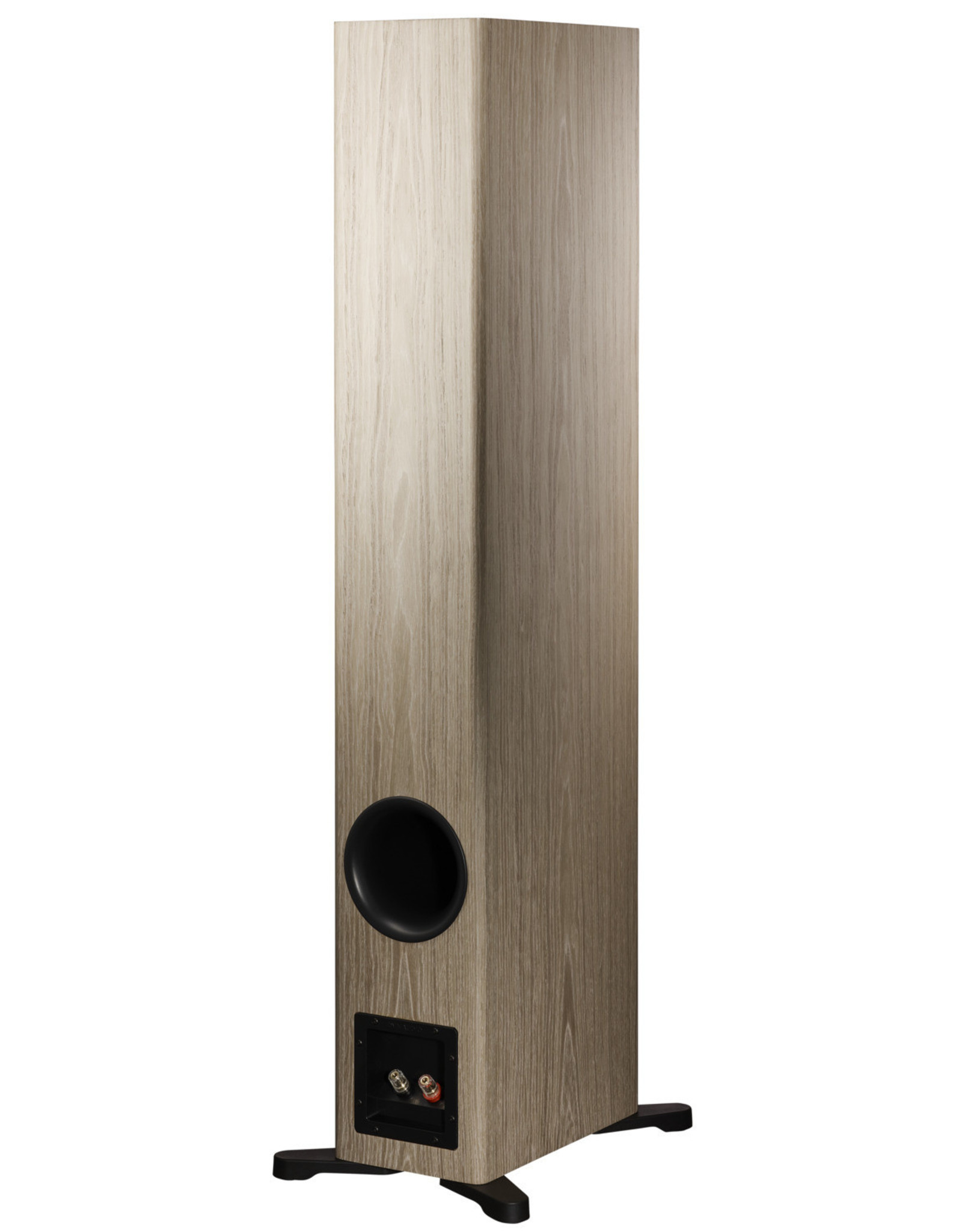 Dynaudio Dynaudio Evoke 50 Floorstanding Speakers
