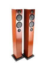 Monitor Audio Monitor Audio Radius 270 Floorstanding Speakers USED