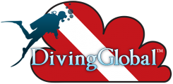 DivingGlobal Profile Main