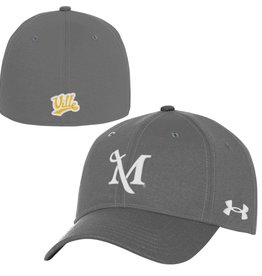 Under Armour Under Armour Stretch Fit Cap Grey