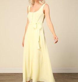 Line and Dot Ray Midi Dress
