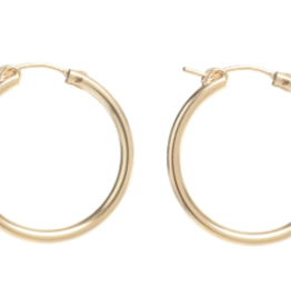 Lisbeth Fauna 14k Gold Fill Hoops