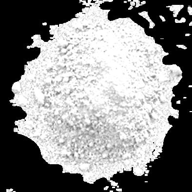 VM ELITE WHITE-1
