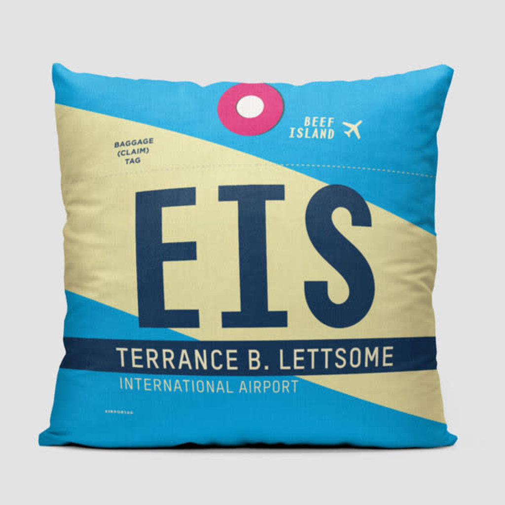 EIS Pillow Cover