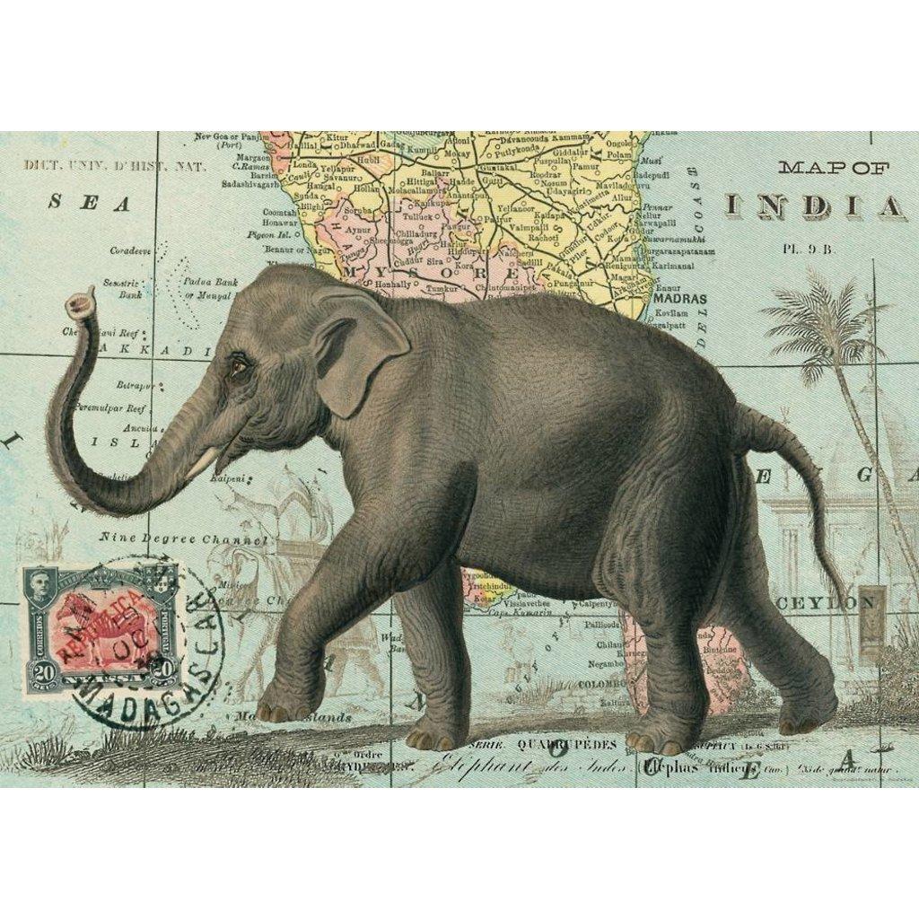 Elephant Poster & Wrap