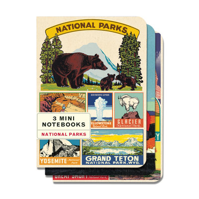 Vintage National Parks 3 Mini Notebooks