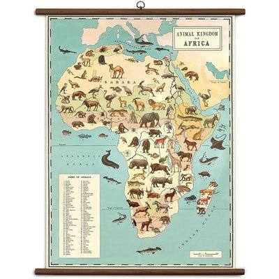 Vintage School Chart Animal Kingdom