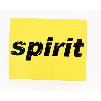 Spirit Airlines sticker