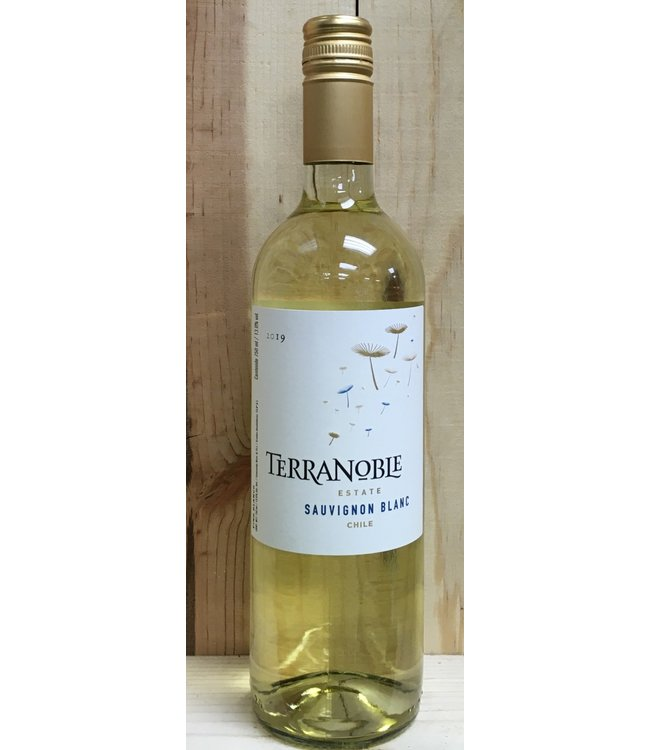 Terranoble Classic Sauvignon Blanc 2019