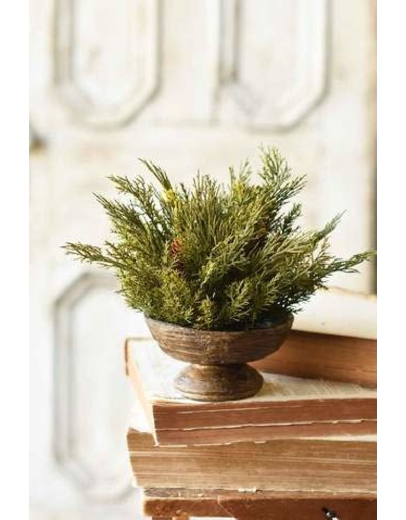 "Alpine Cedar Half Sphere 11"" XP78425"