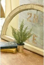 """Potted Glittered Cedar Tree 12"""" XJ6370"""