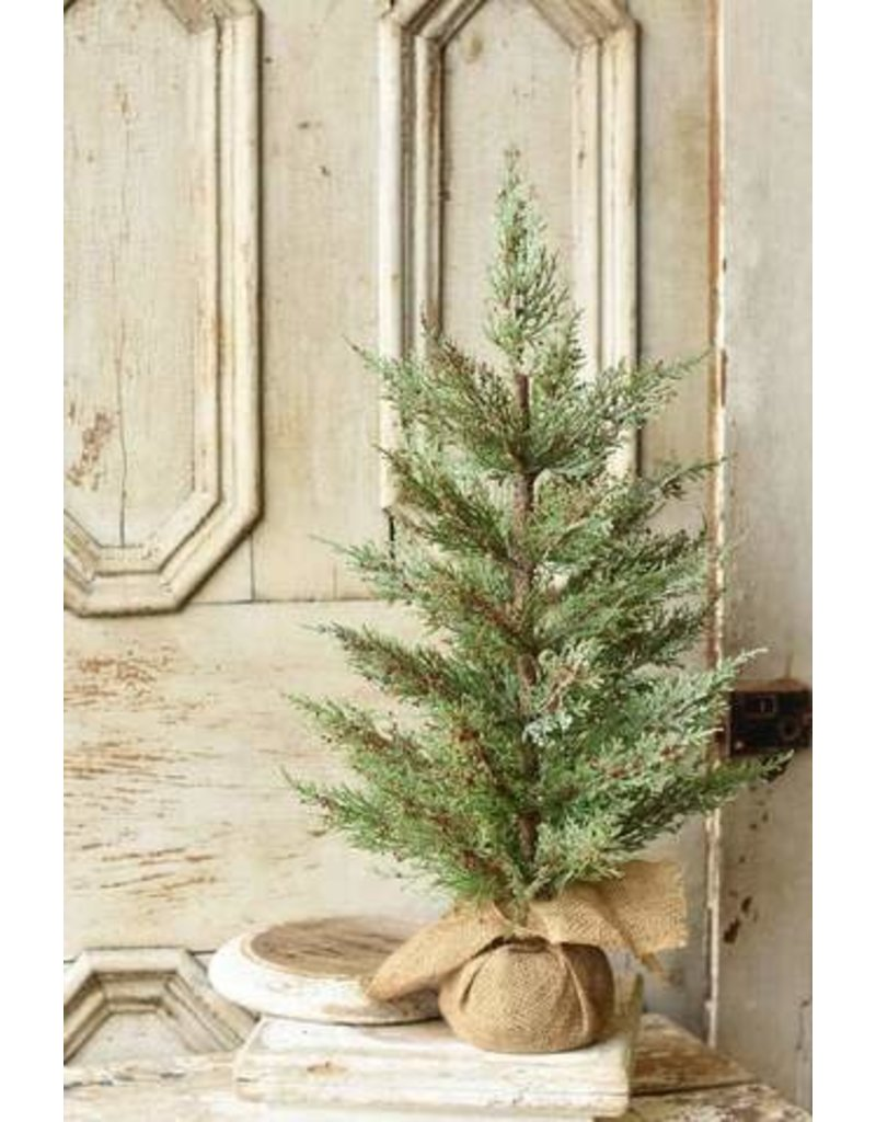 Dashing Cedar/Berry Tree 24""