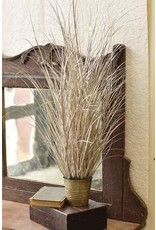 "Fountain Grass in Pot 37"" XSQ8772"