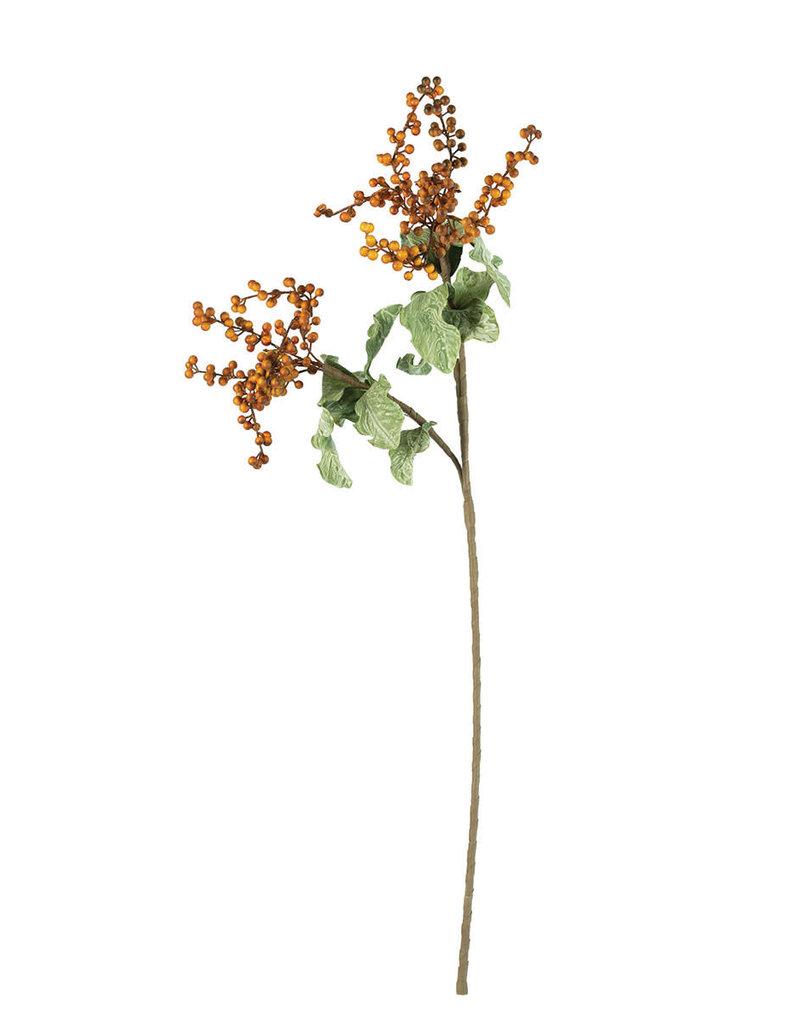 Botanica #3156
